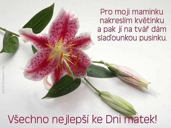 002 přání Den matek
