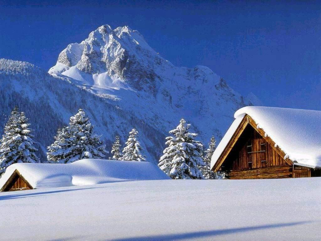 005 zimní krajina - winter landscape