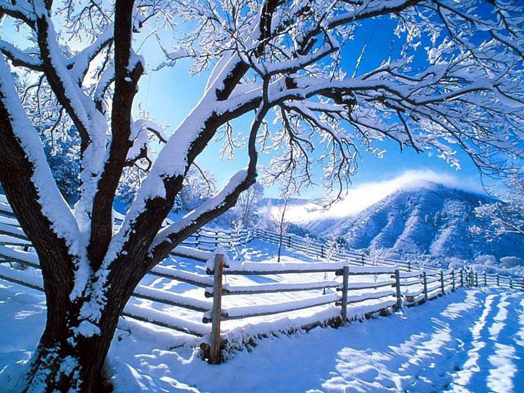 006 zimní krajina - winter landscape