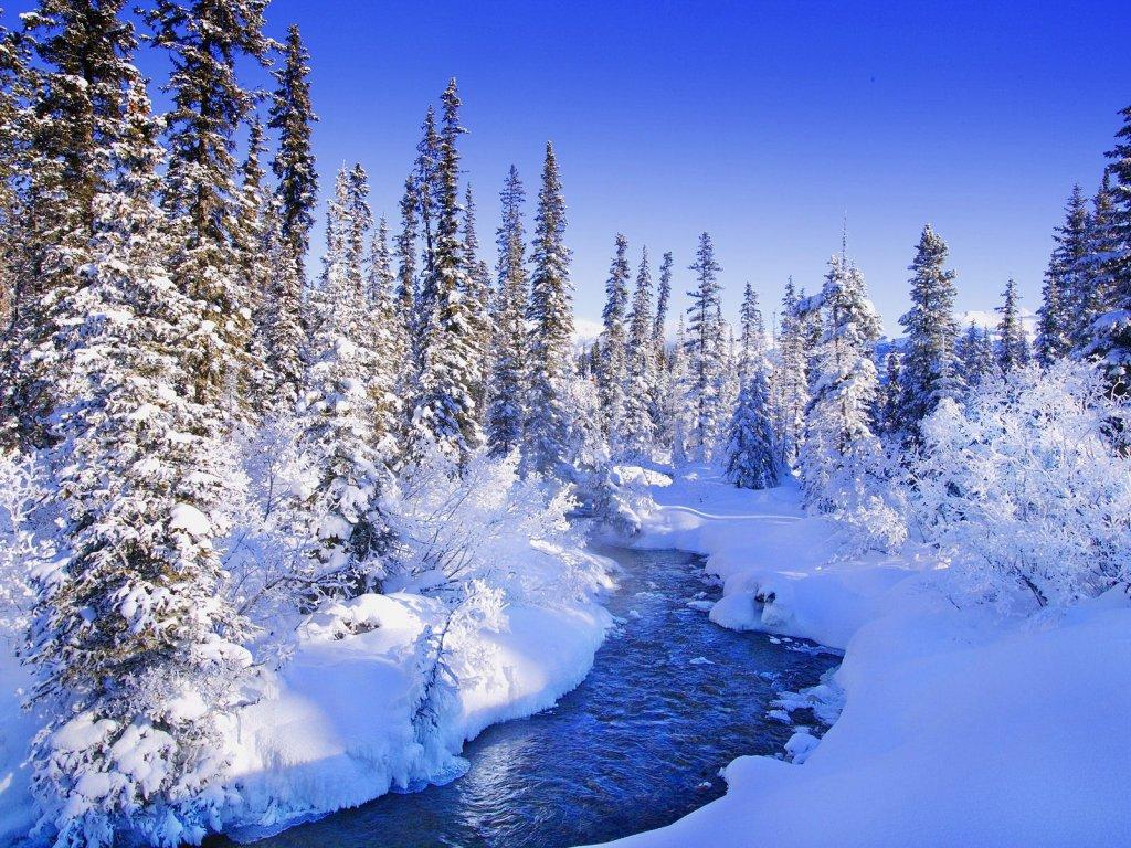 007 zimní krajina - winter landscape