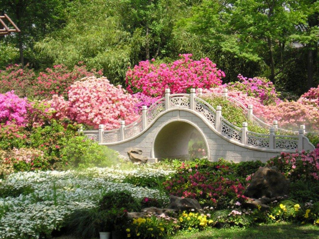 008 parky zahrady květiny