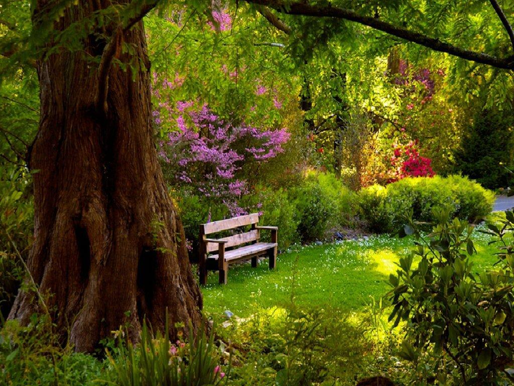 009 parky zahrady květiny