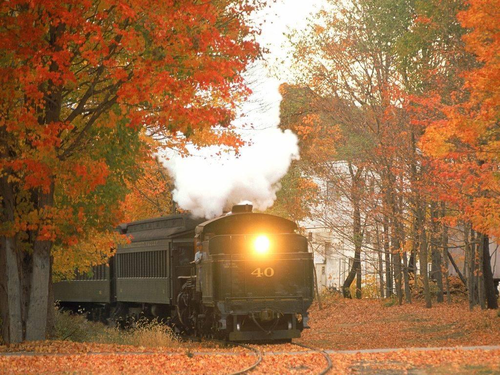 009 vlaky - nádraží