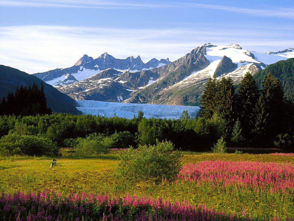 009 Mendenhall Glacier Alaska