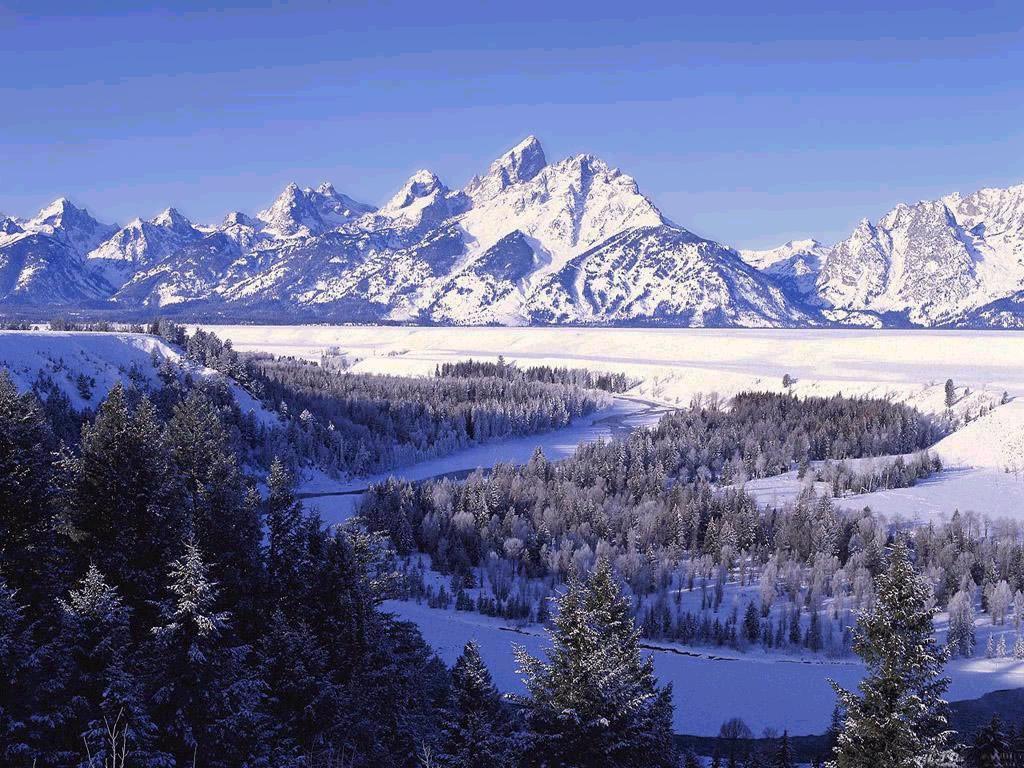 010 zimní krajina - winter landscape