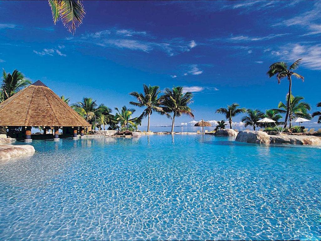 011 moře pláž palmy