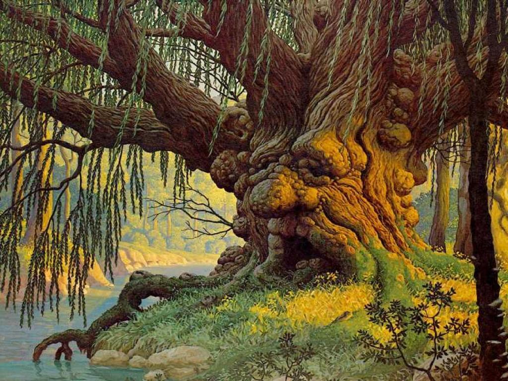 012 krajina - příroda - pohádkový strom - nature