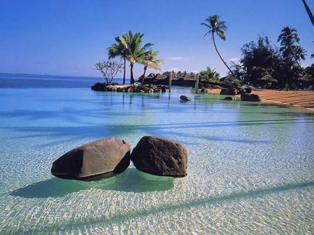 012 moře pláž palmy