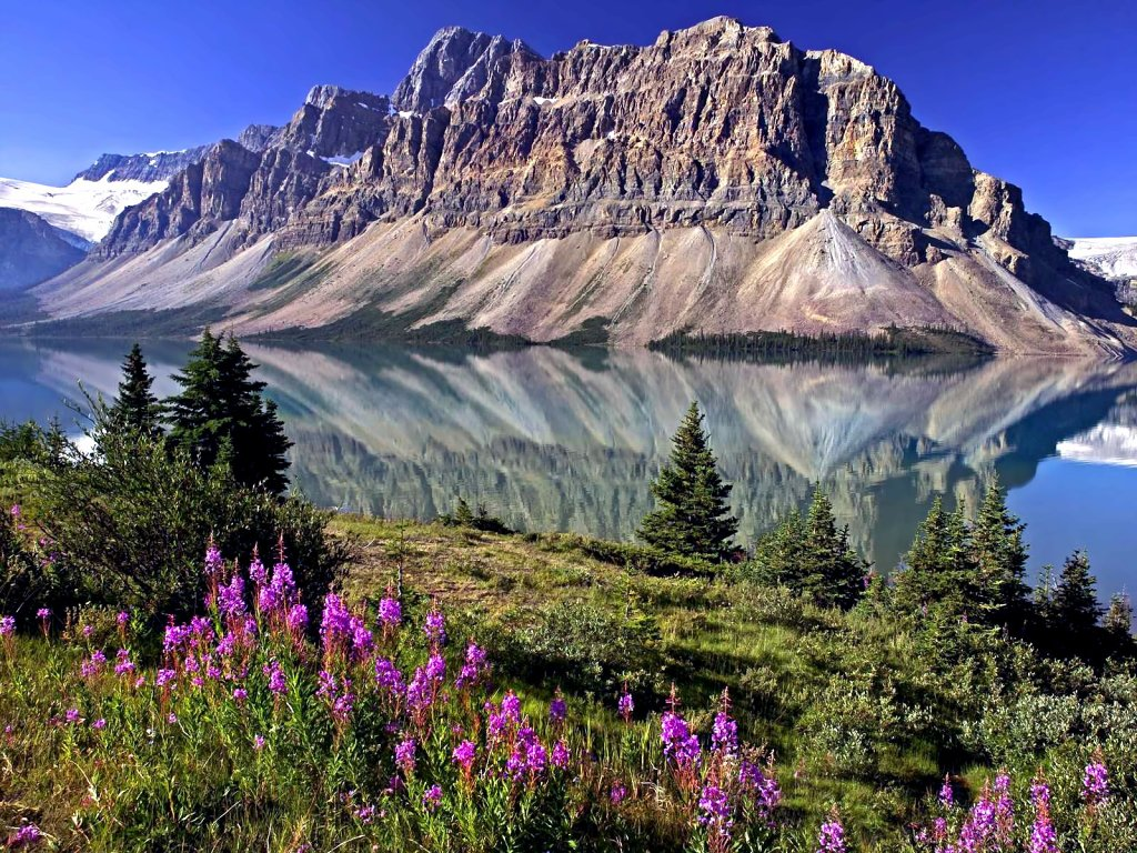 013 National Park Alberta Canada