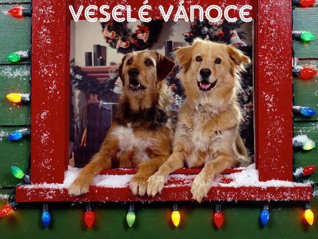 013 Vánoční pohledy pohlednice Christmas