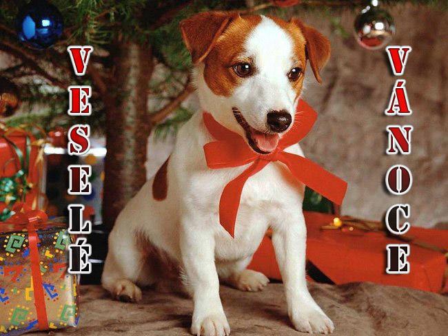 014 Vánoční pohledy pohlednice Christmas
