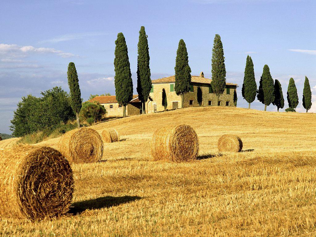 014 krajina - Tuscany - Italy
