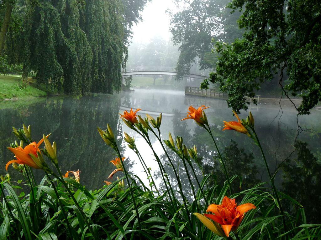 014 zahrady parky květiny