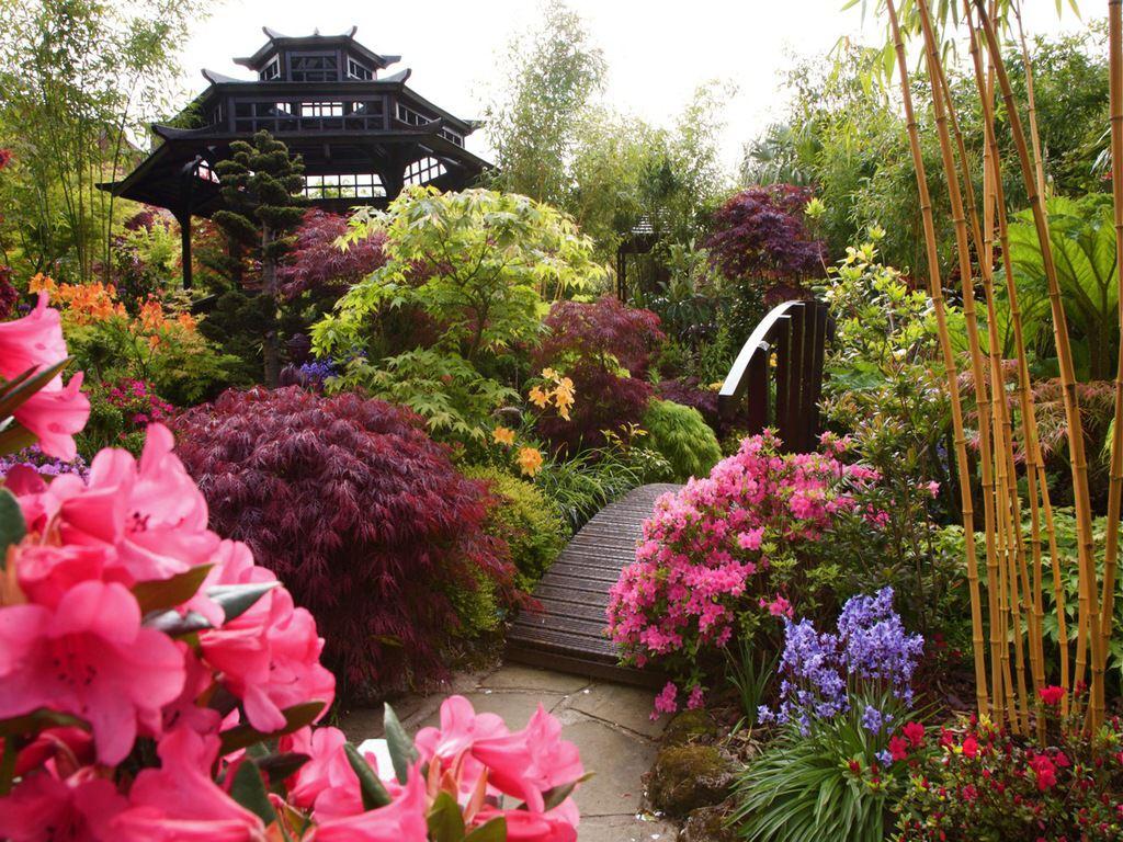 015 parky zahrady květiny