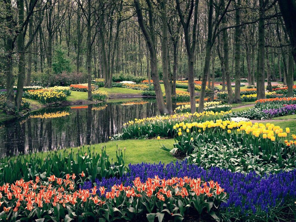 016 parky zahrady květiny