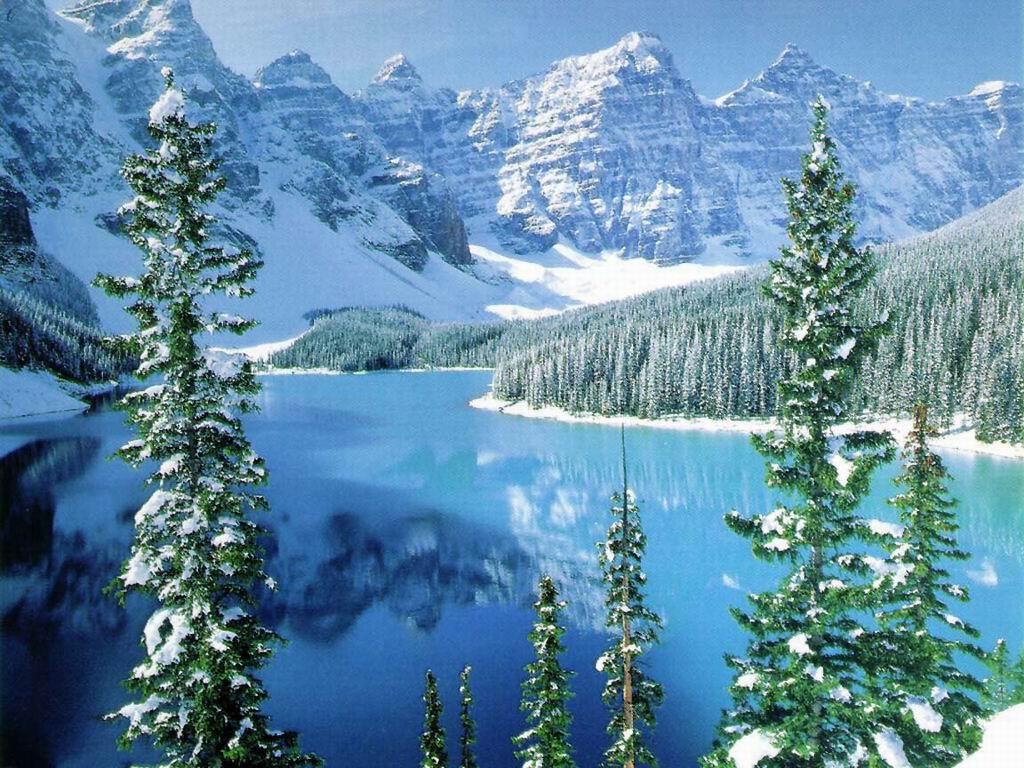016 zimní krajina - winter landscape