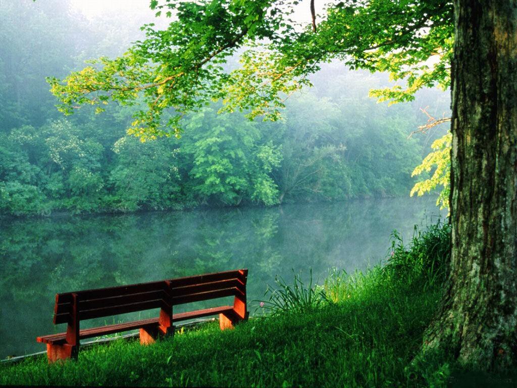 017 krajina - příroda - řeka - nature - landscape