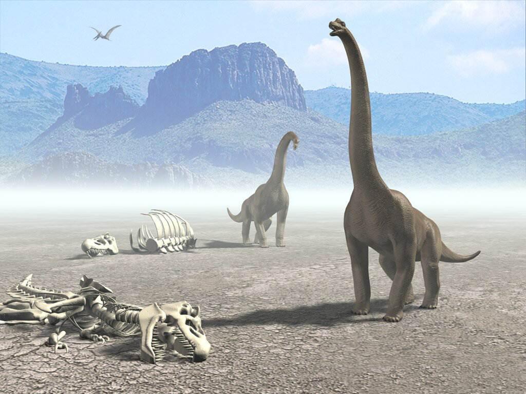017 pravěk prehistoric dinosaur dinosauři