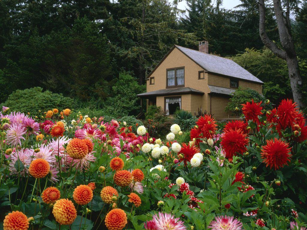 018 parky zahrady květiny