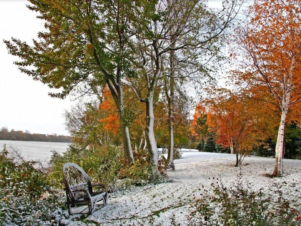 018 zimní krajina - winter landscape