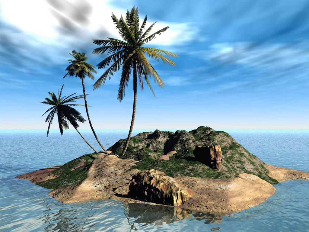 019 moře pláž palmy