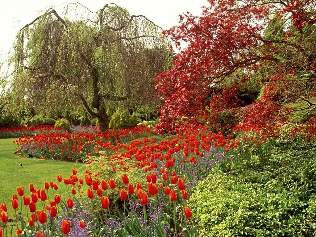 019 parky zahrady květiny