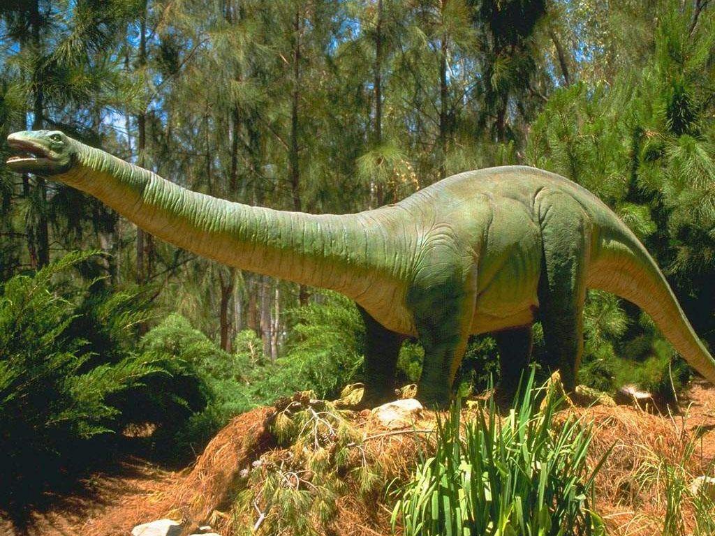 019 pravěk prehistoric dinosaur dinosauři