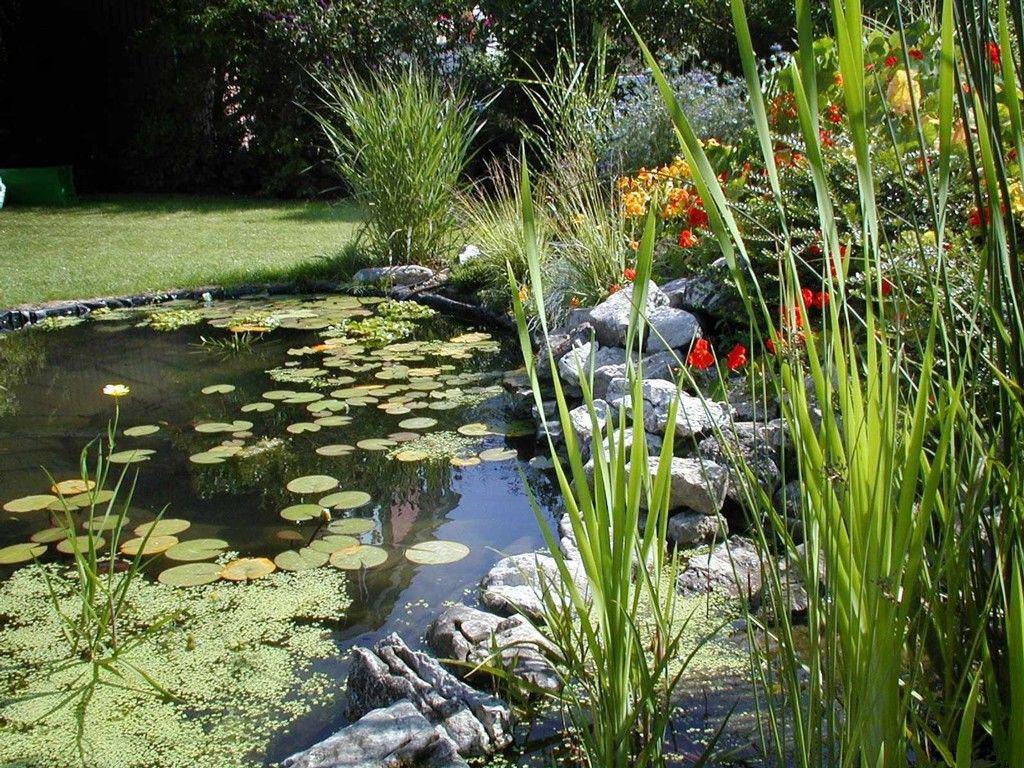 020 parky zahrady květiny