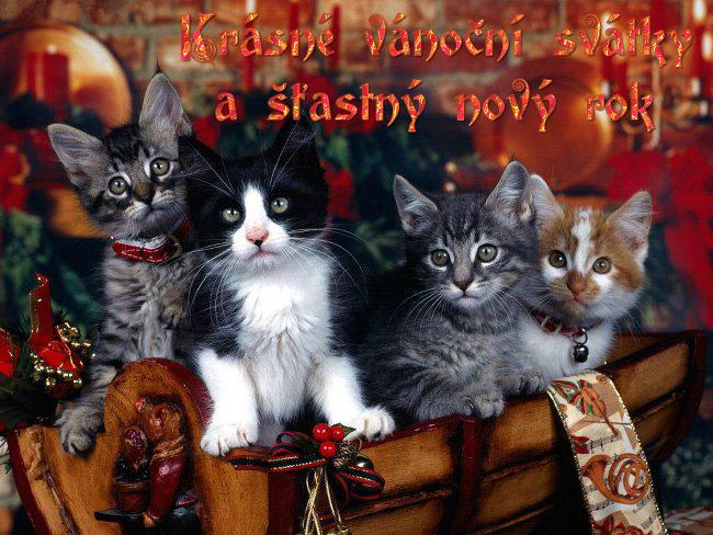 021 Vánoční pohledy pohlednice Christmas