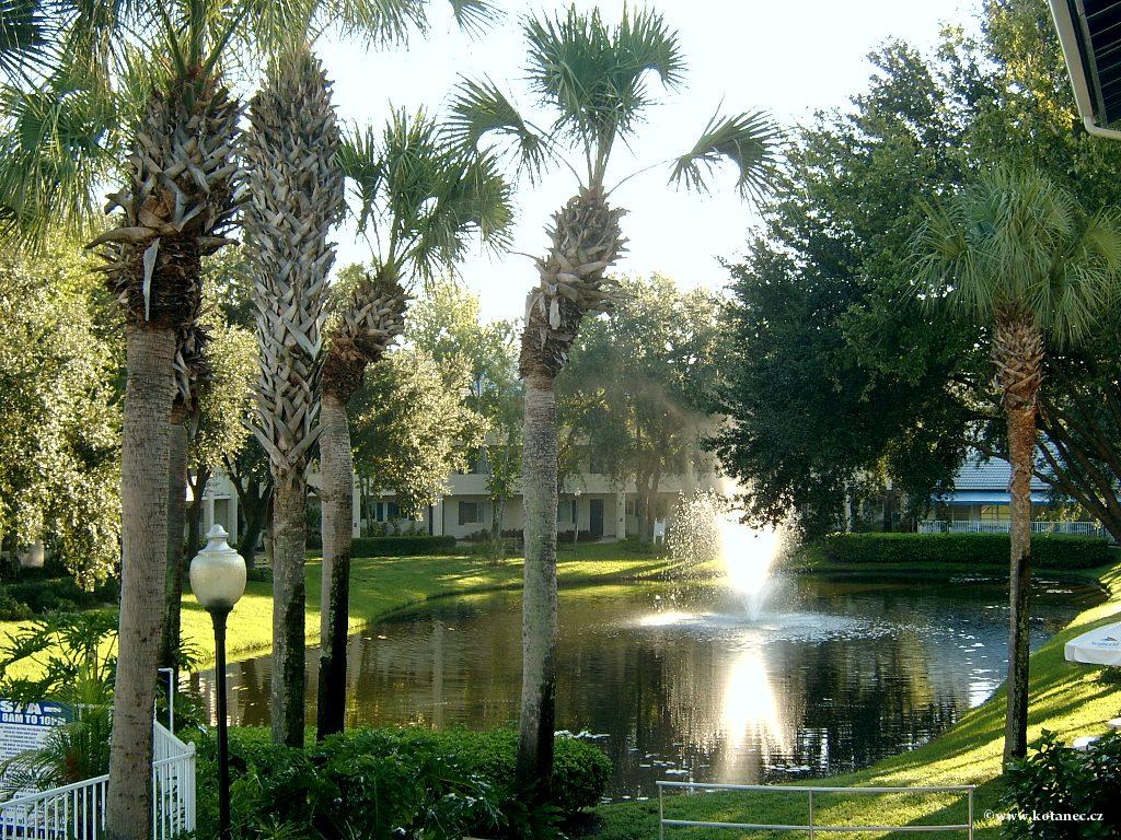 024 Orlando Florida