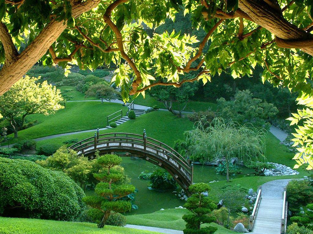 026 parky zahrady květiny