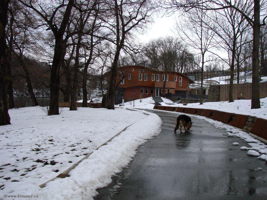 029 Kadaň - nábřeží Maxipsa Fíka v zimě