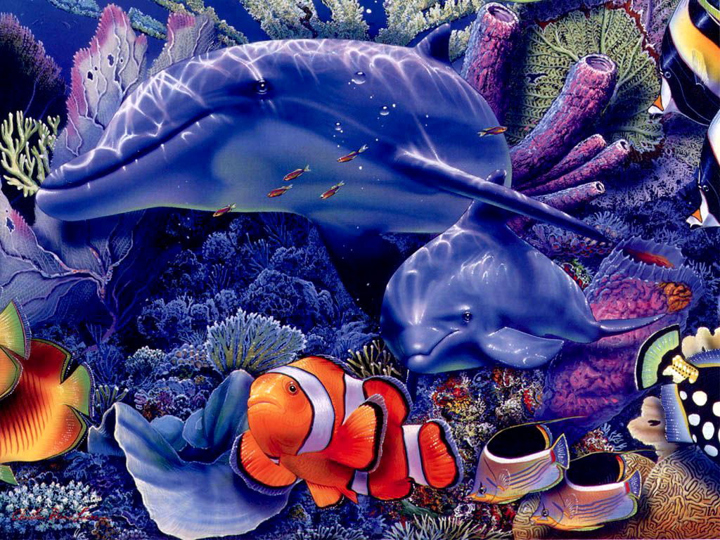 030 ryby - delfíni