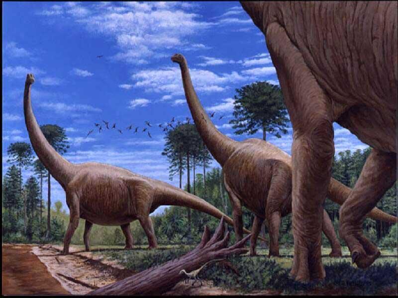 032 pravěk prehistoric dinosaur dinosauři