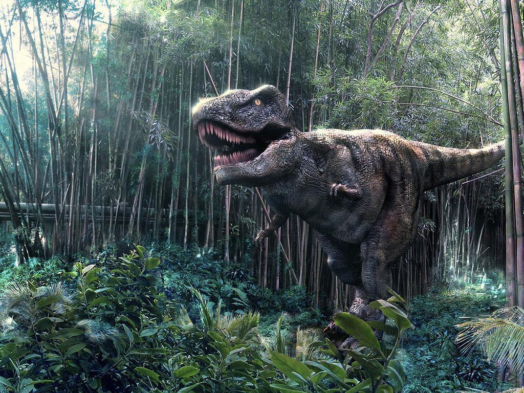 034 pravěk prehistoric dinosaur dinosauři
