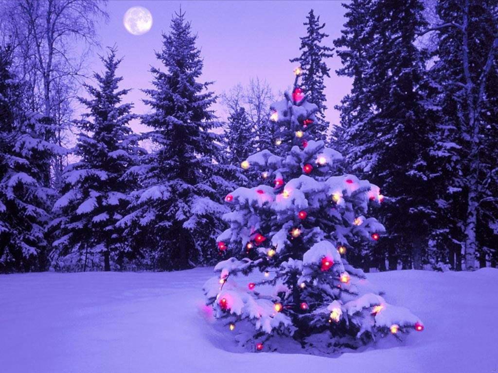 042 vánoční krajina - Christmas landscape