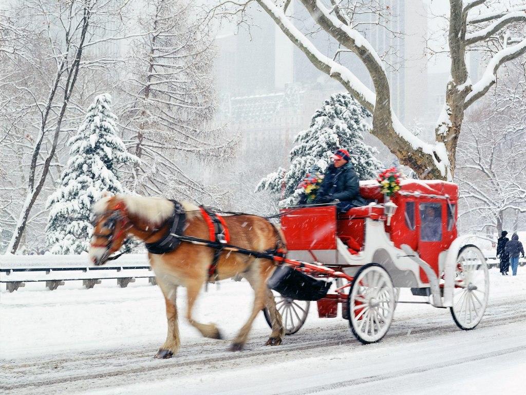 056 vánoční krajina - Christmas landscape